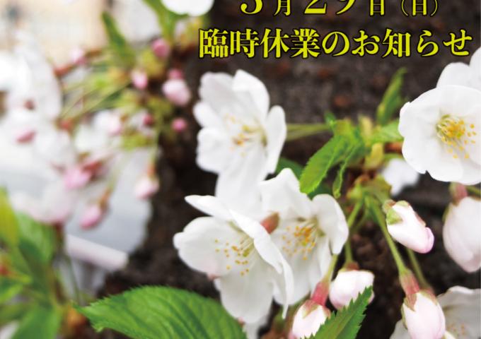 3月29日(日)臨時休業のお知らせ